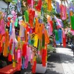 七夕の笹は終わったらどうする?七夕飾りの処分は神社?いつまで飾る?