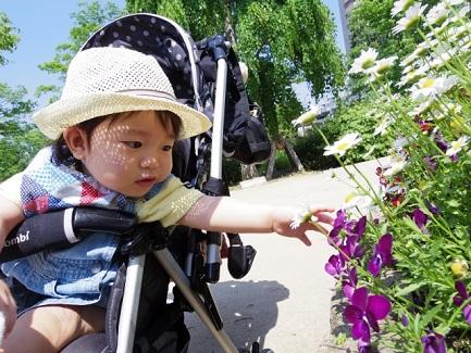 赤ちゃん 紫外線対策 ベビーカー