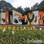 野毛山動物園にいる動物は?展示動物一覧とさわれる動物まとめ