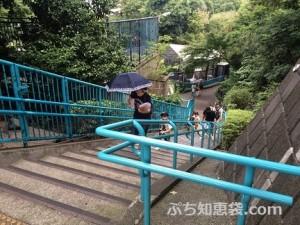 野毛山動物園 写真